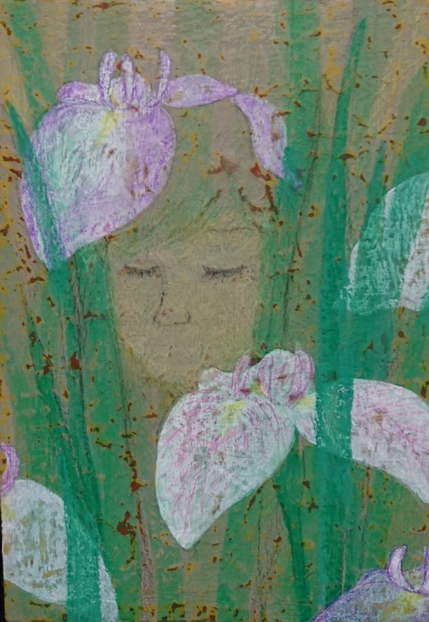 「花菖蒲」小林 和枝